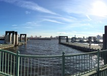お台場から見る東京湾